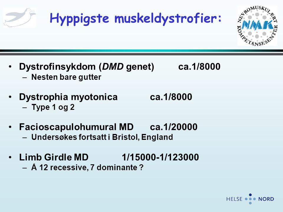 Hyppigste muskeldystrofier: •Dystrofinsykdom (DMD genet)ca.1/8000 –Nesten bare gutter •Dystrophia myotonicaca.1/8000 –Type 1 og 2 •Facioscapulohumural MDca.1/20000 –Undersøkes fortsatt i Bristol, England •Limb Girdle MD1/15000-1/123000 –Å 12 recessive, 7 dominante ?