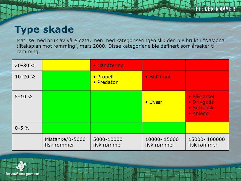 """Type skade Matrise med bruk av våre data, men med kategoriseringen slik den ble brukt i """"Nasjonal tiltaksplan mot rømming"""", mars 2000. Disse kategorie"""