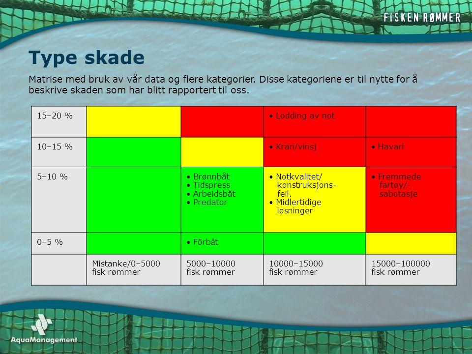 Type skade 15–20 %• Lodding av not 10–15 %• Kran/vinsj• Havari 5–10 %• Brønnbåt • Tidspress • Arbeidsbåt • Predator • Notkvalitet/ konstruksjons- feil