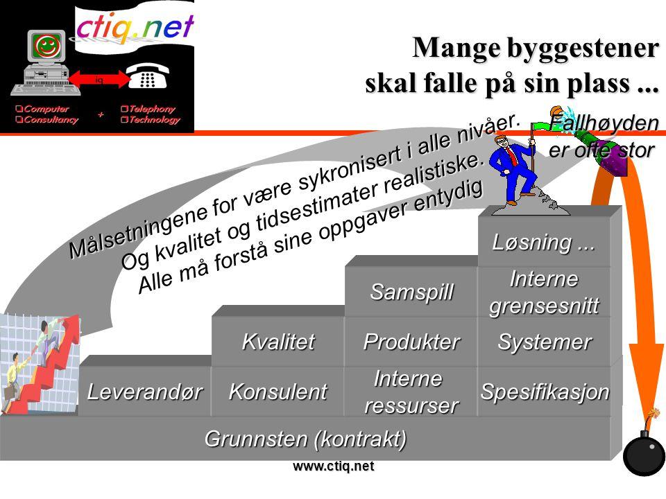 www.ctiq.net Viktige elementer...