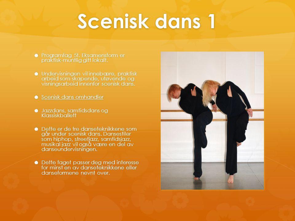 Scenisk dans 1  Programfag 5t. Eksamensform er praktisk-muntlig gitt lokalt.  Undervisningen vil innebære, praktisk arbeid som skapende, utøvende og