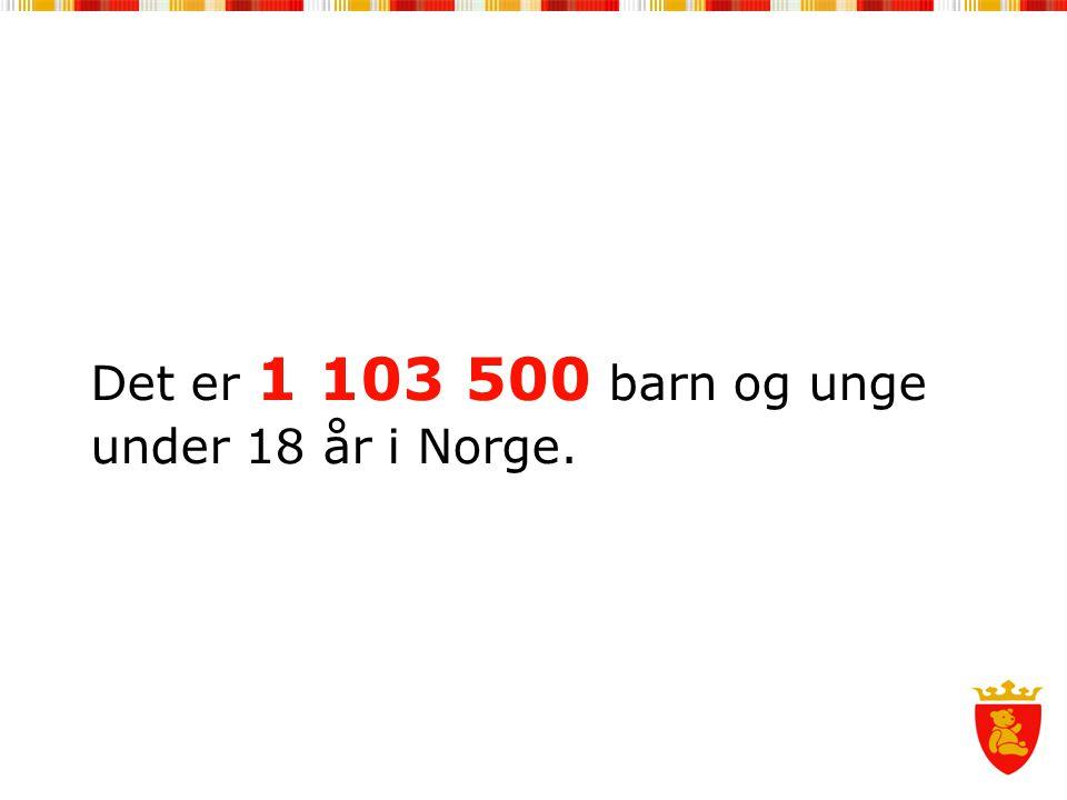 Det er 1 103 500 barn og unge under 18 år i Norge.