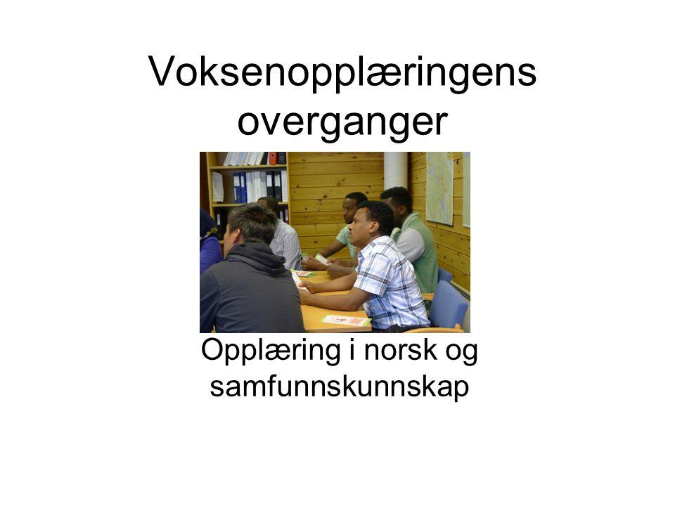 Voksenopplæringens overganger Opplæring i norsk og samfunnskunnskap