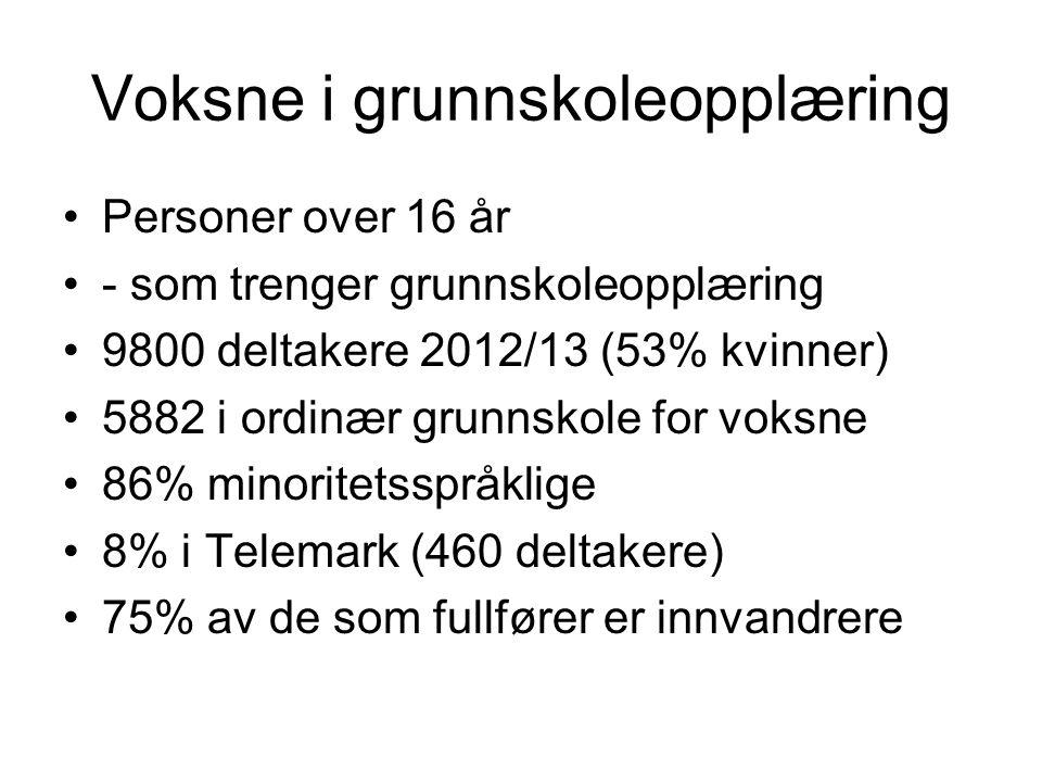 Voksne i grunnskoleopplæring •Personer over 16 år •- som trenger grunnskoleopplæring •9800 deltakere 2012/13 (53% kvinner) •5882 i ordinær grunnskole for voksne •86% minoritetsspråklige •8% i Telemark (460 deltakere) •75% av de som fullfører er innvandrere