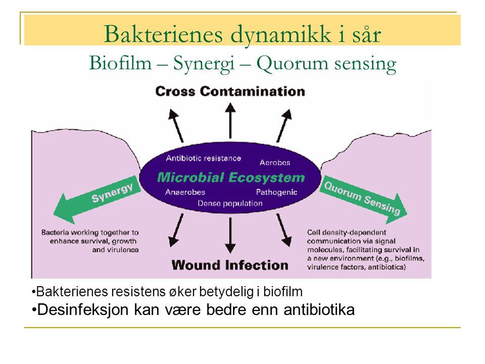 Bakterienes dynamikk i sår Biofilm – Synergi – Quorum sensing •Bakterienes resistens øker betydelig i biofilm •Desinfeksjon kan være bedre enn antibio