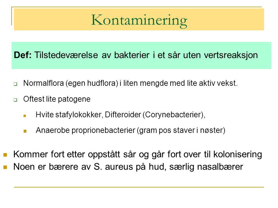 Kontaminering  Normalflora (egen hudflora) i liten mengde med lite aktiv vekst.
