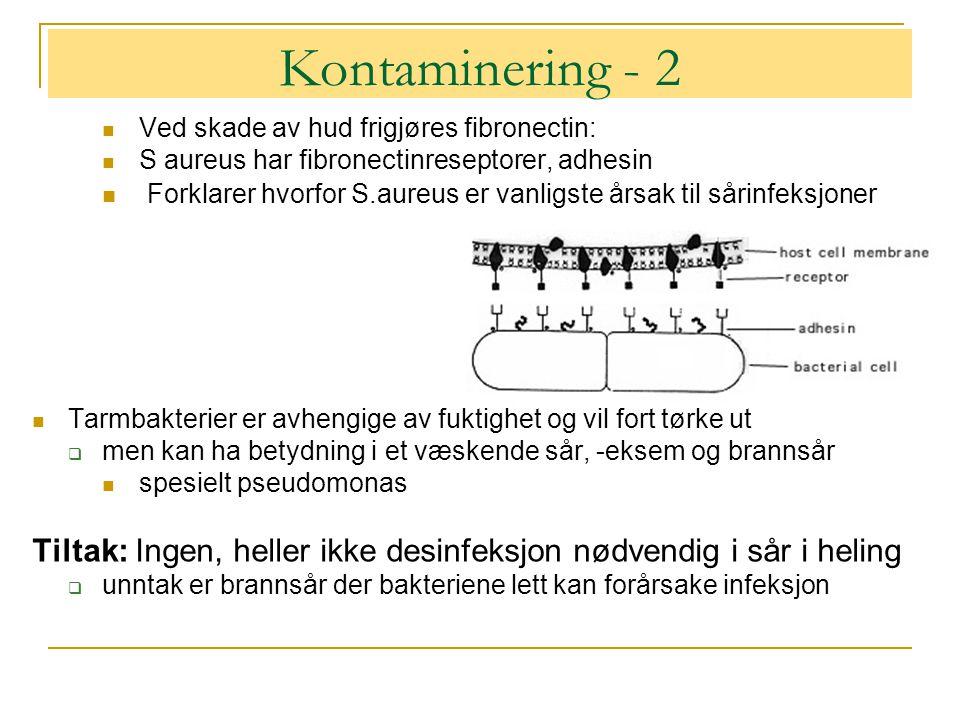 Kontaminering - 2  Ved skade av hud frigjøres fibronectin:  S aureus har fibronectinreseptorer, adhesin  Forklarer hvorfor S.aureus er vanligste årsak til sårinfeksjoner  Tarmbakterier er avhengige av fuktighet og vil fort tørke ut  men kan ha betydning i et væskende sår, -eksem og brannsår  spesielt pseudomonas Tiltak: Ingen, heller ikke desinfeksjon nødvendig i sår i heling  unntak er brannsår der bakteriene lett kan forårsake infeksjon