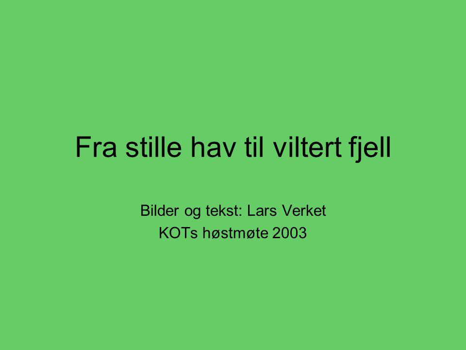 Fra stille hav til viltert fjell Bilder og tekst: Lars Verket KOTs høstmøte 2003