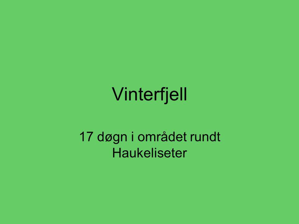 Vinterfjell 17 døgn i området rundt Haukeliseter