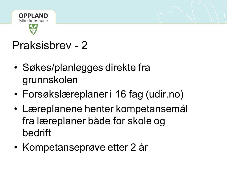 Praksisbrev - 3 •Praksisbrev i Oppland –Søkbart, eget søknadsskjema (ikke på Vigo Web) –Grunnskolen må sammen med lærebedrift og videregående skole lage en plan for opplæringen –Planen må være klar på søknadstidspunkt –Søknadsfrist 1.