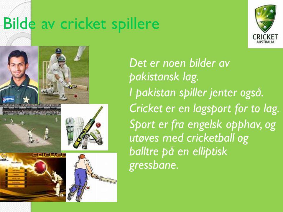 Bilde av cricket spillere Det er noen bilder av pakistansk lag. I pakistan spiller jenter også. Cricket er en lagsport for to lag. Sport er fra engels