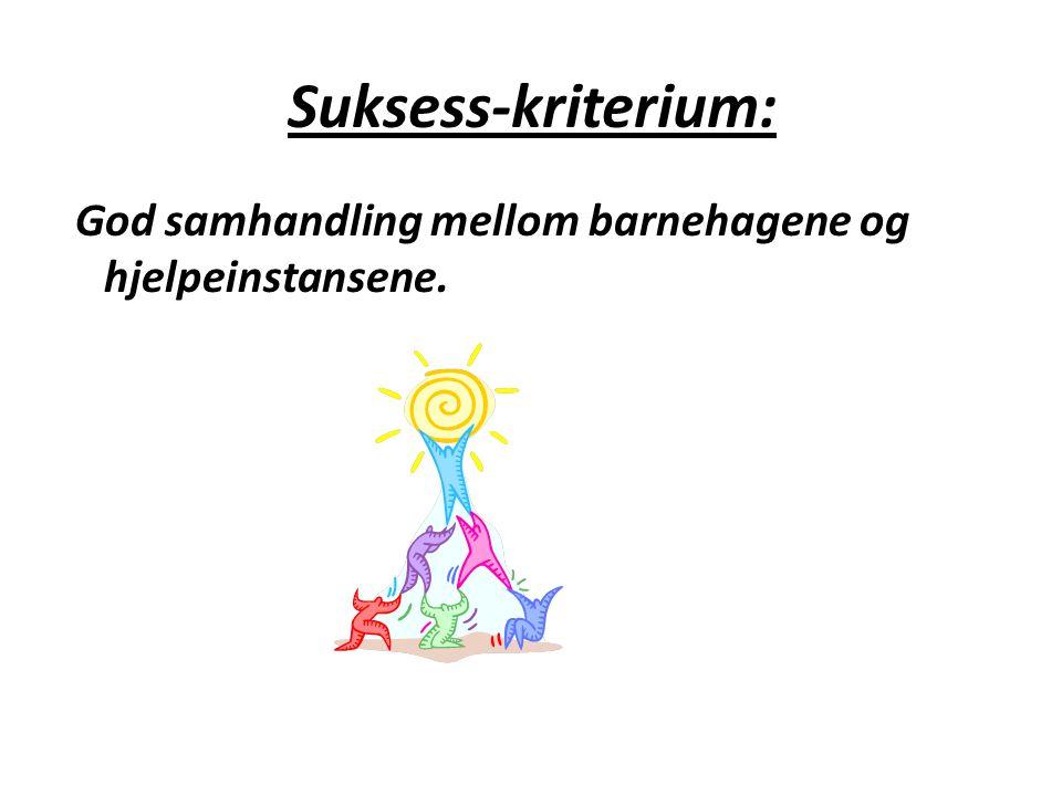 Suksess-kriterium: God samhandling mellom barnehagene og hjelpeinstansene.