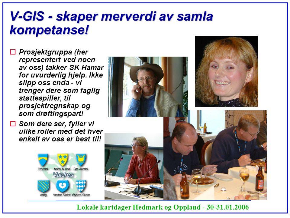 Lokale kartdager Hedmark og Oppland - 30-31.01.2006 V-GIS - skaper merverdi av samla kompetanse! oProsjektgruppa (her representert ved noen av oss) ta