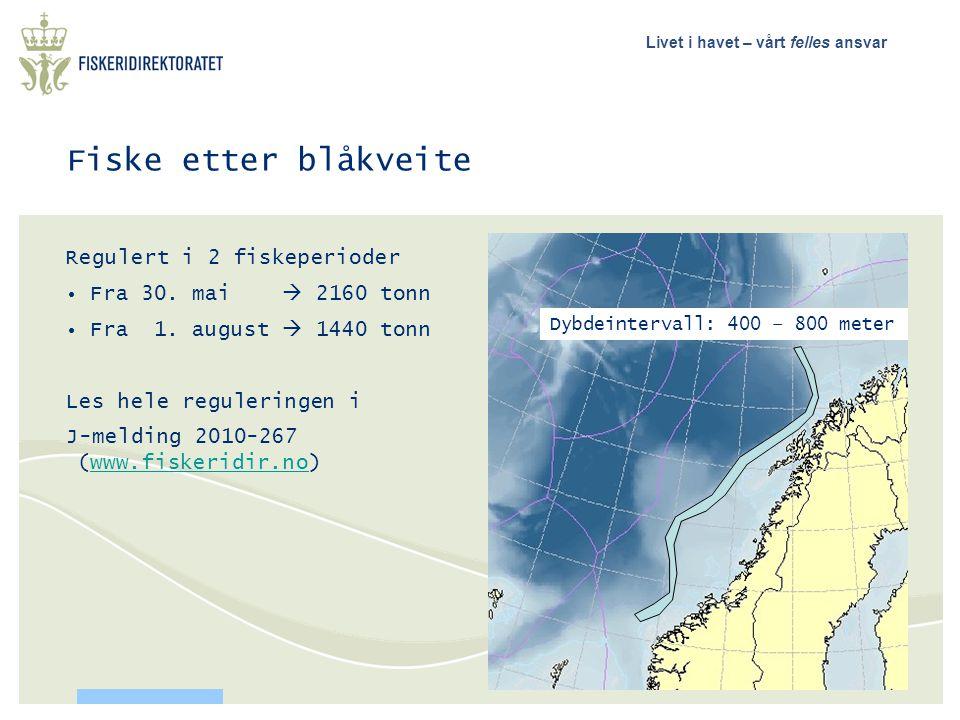 Livet i havet – vårt felles ansvar Fiske etter blåkveite Regulert i 2 fiskeperioder • Fra 30. mai  2160 tonn • Fra 1. august  1440 tonn Les hele reg