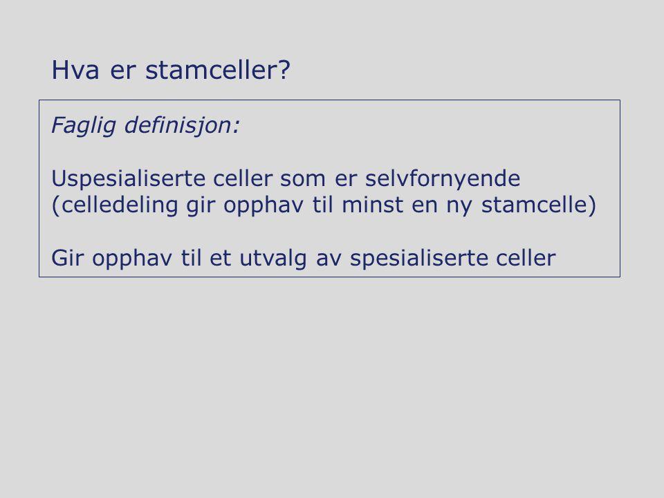 Hva er stamceller? Faglig definisjon: Uspesialiserte celler som er selvfornyende (celledeling gir opphav til minst en ny stamcelle) Gir opphav til et