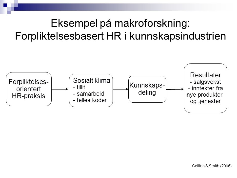 Forpliktelses- orientert HR-praksis Sosialt klima - tillit - samarbeid - felles koder Kunnskaps- deling Resultater - salgsvekst - inntekter fra nye pr