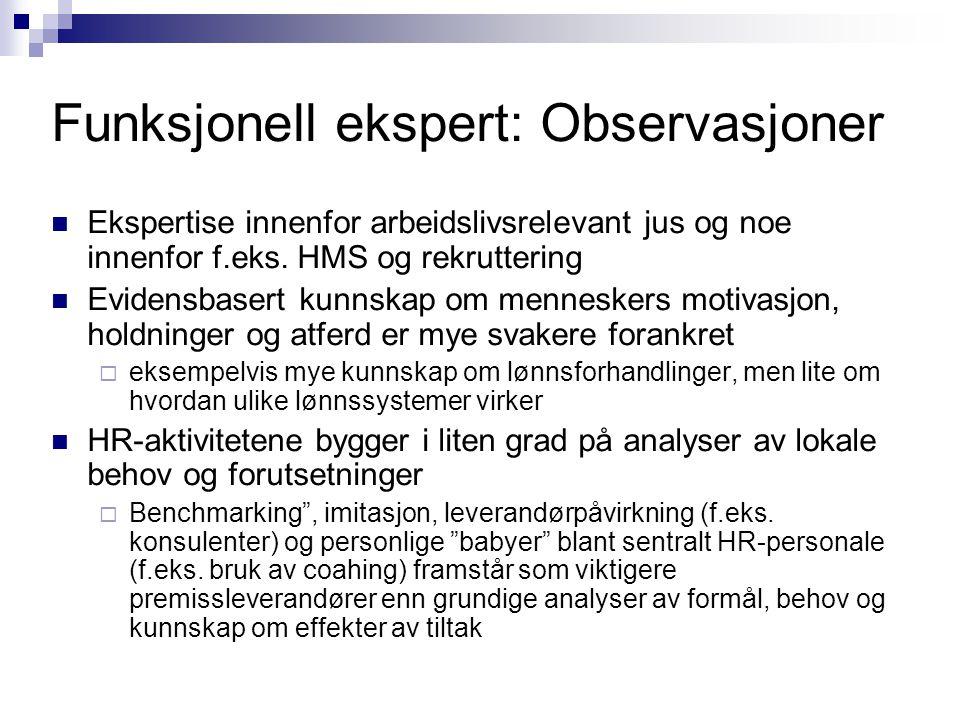 Funksjonell ekspert: Observasjoner  Ekspertise innenfor arbeidslivsrelevant jus og noe innenfor f.eks. HMS og rekruttering  Evidensbasert kunnskap o
