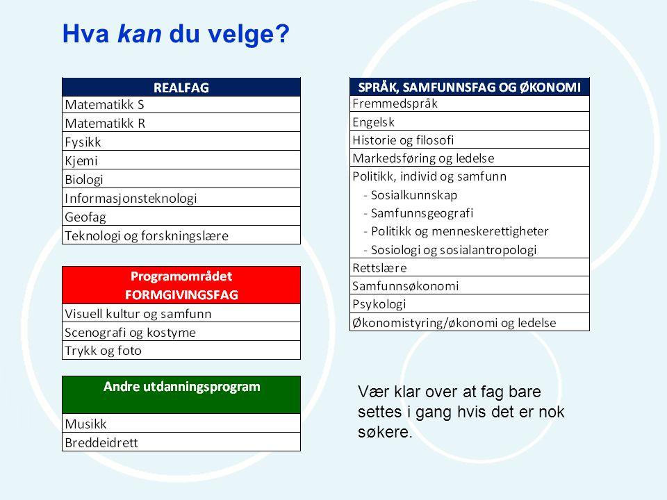 Eksempler på valg av programfag Programområdet REALFAG