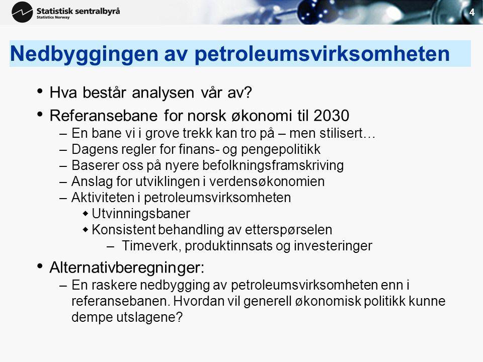 4 Nedbyggingen av petroleumsvirksomheten • Hva består analysen vår av? • Referansebane for norsk økonomi til 2030 –En bane vi i grove trekk kan tro på
