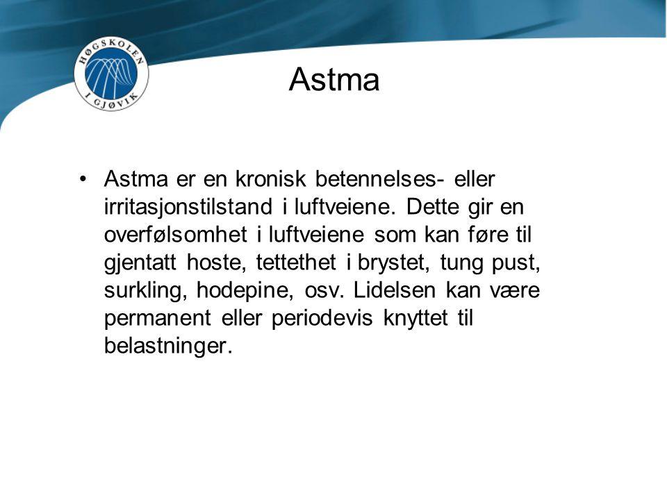 Hva sier forskriftene om allergi •Forskriftene har ikke konkretisert hvordan man skal ta hensyn astmatikere og allergikere.