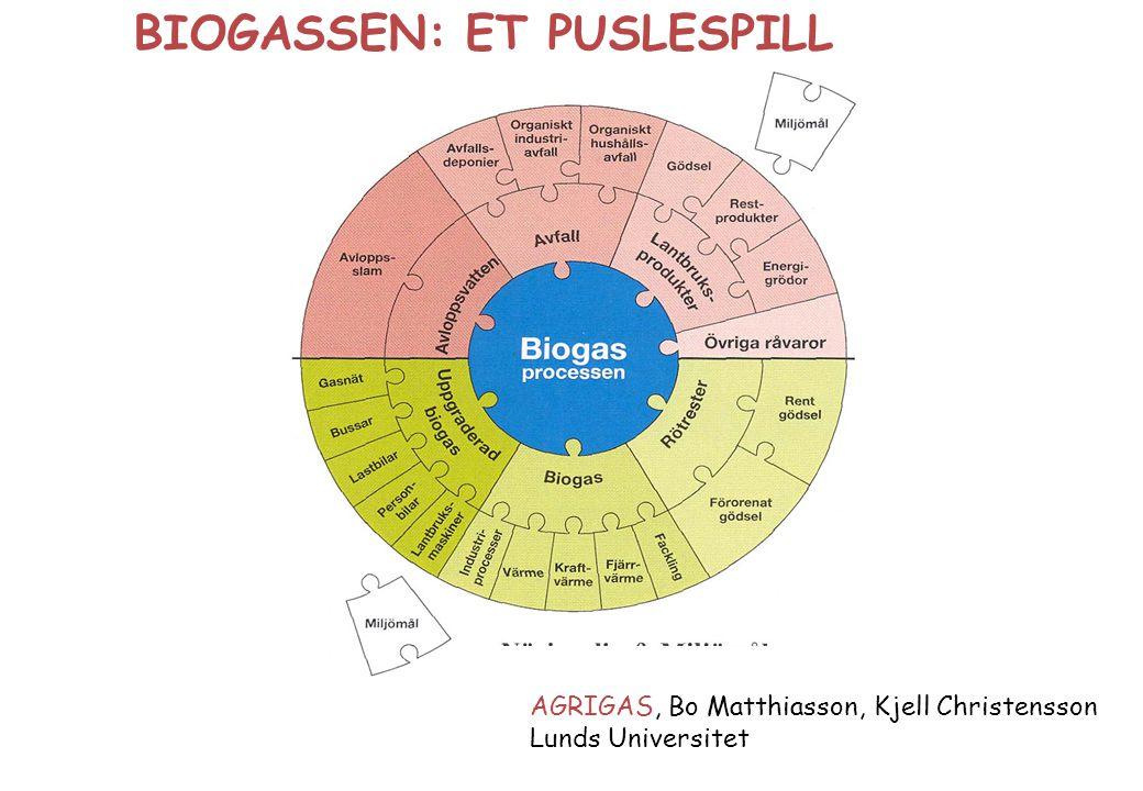 AGRIGAS, Bo Matthiasson, Kjell Christensson Lunds Universitet BIOGASSEN: ET PUSLESPILL