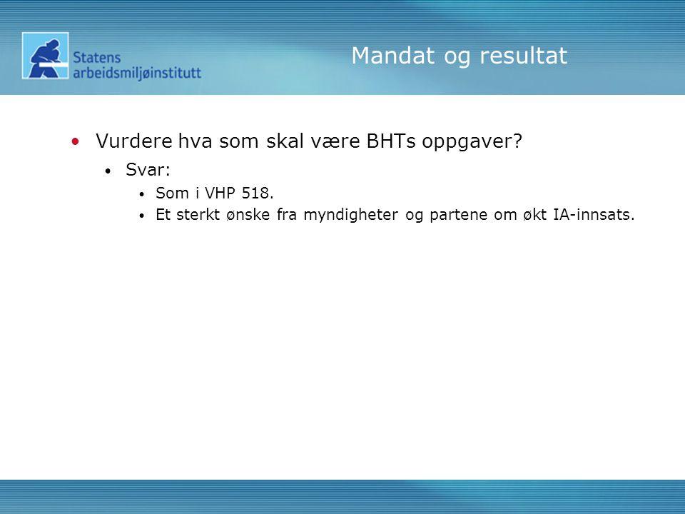 Mandat og resultat •Vurdere hva som skal være BHTs oppgaver.
