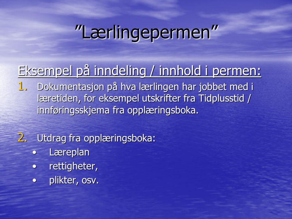 Lærlingepermen Eksempel på inndeling / innhold i permen: 1.