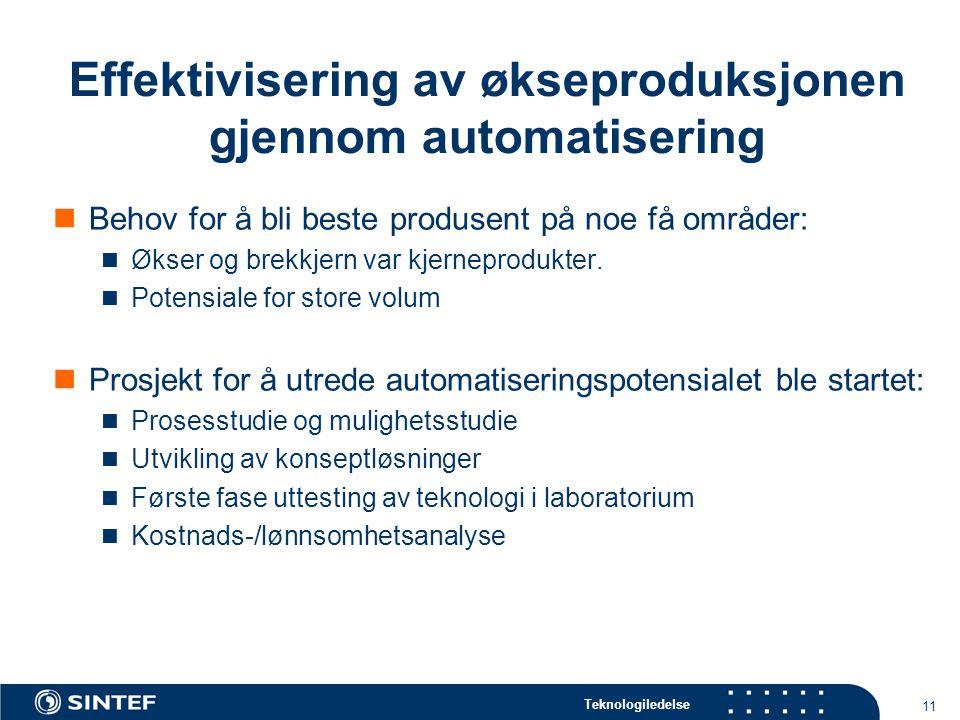 Teknologiledelse 11 Effektivisering av økseproduksjonen gjennom automatisering  Behov for å bli beste produsent på noe få områder:  Økser og brekkjern var kjerneprodukter.