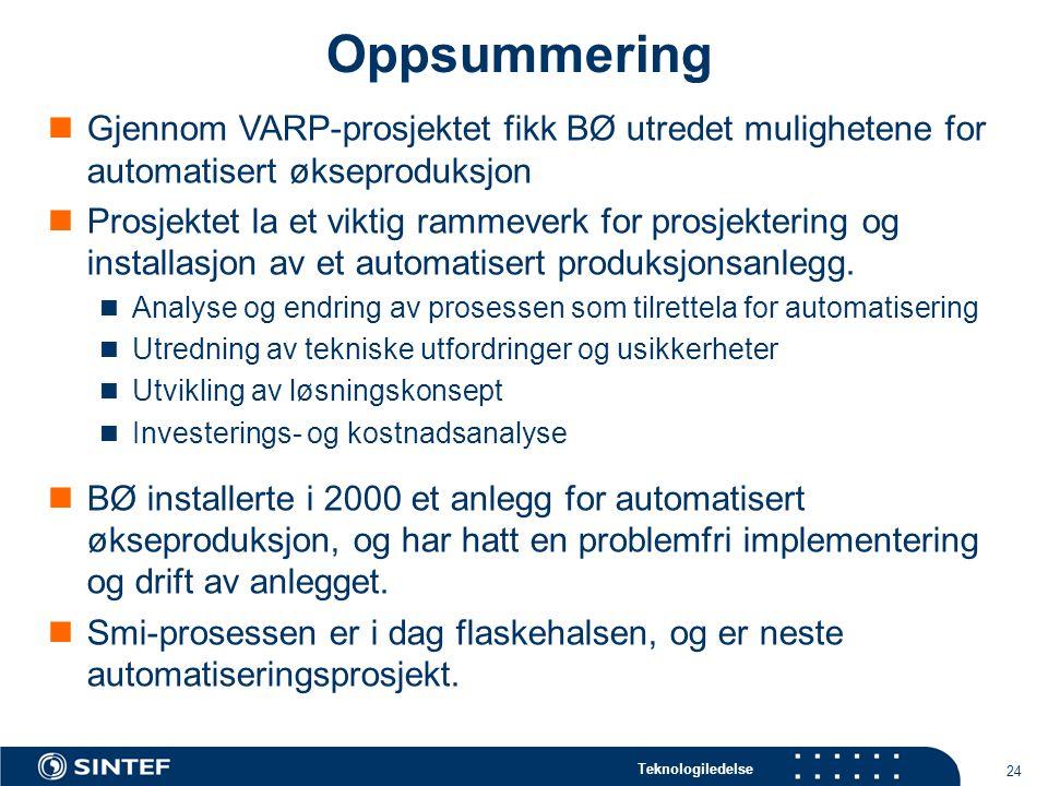 Teknologiledelse 24 Oppsummering  Gjennom VARP-prosjektet fikk BØ utredet mulighetene for automatisert økseproduksjon  Prosjektet la et viktig rammeverk for prosjektering og installasjon av et automatisert produksjonsanlegg.