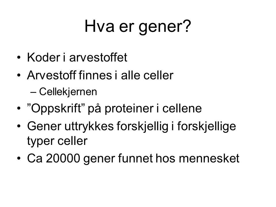"""Hva er gener? •Koder i arvestoffet •Arvestoff finnes i alle celler –Cellekjernen •""""Oppskrift"""" på proteiner i cellene •Gener uttrykkes forskjellig i fo"""