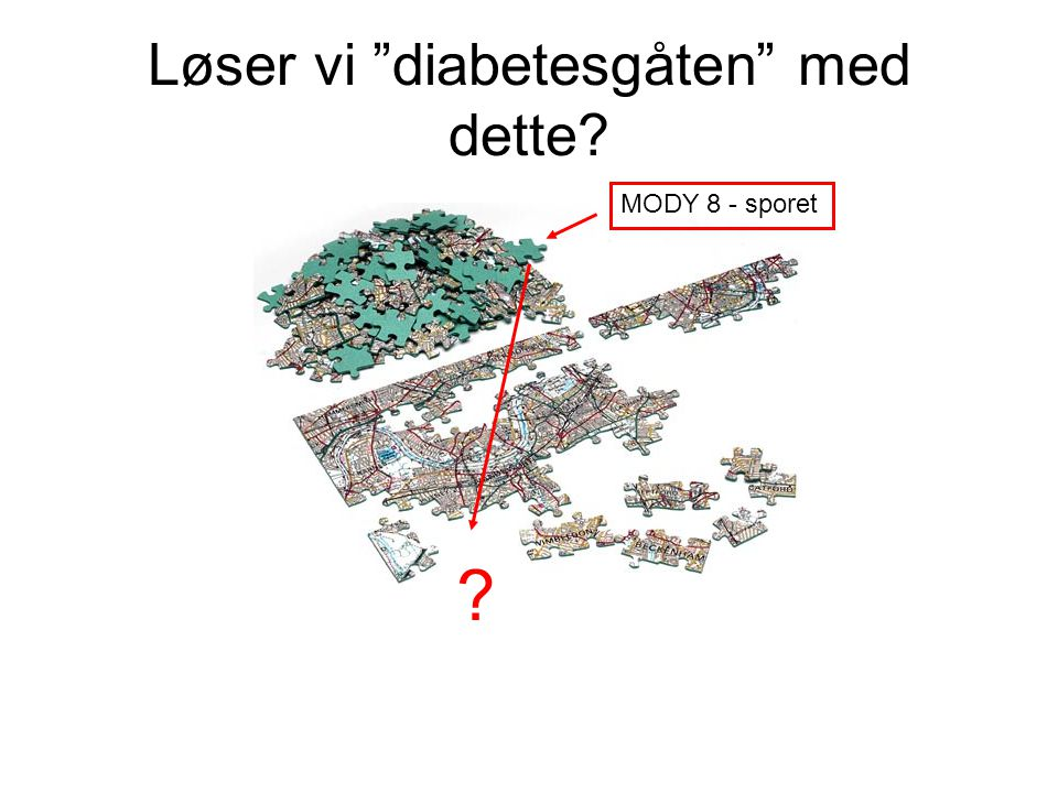 """Løser vi """"diabetesgåten"""" med dette? MODY 8 - sporet ?"""