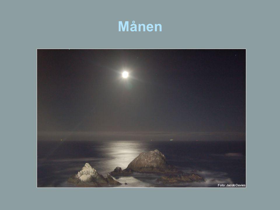 Månen Foto: Jacob Davies