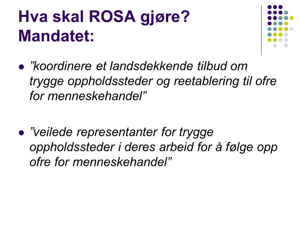 Hva skal ROSA gjøre.