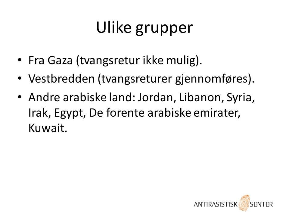 Ulike grupper • Fra Gaza (tvangsretur ikke mulig). • Vestbredden (tvangsreturer gjennomføres). • Andre arabiske land: Jordan, Libanon, Syria, Irak, Eg