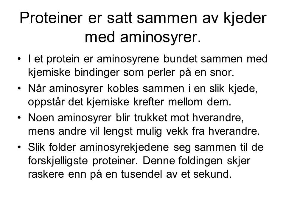 Allergi og astma er et nasjonalt problem •1.5 millioner mennesker i Norge er berørt •1 millon søker lege hvert år •200 000 har store problemer •Finnes hos ca 40% av barn og unge •Sykelighet og dødelighet av astma er tredoblet på 30-40 år •Økningen har sammenheng med miljøforhold •Innemiljøet er meget viktig