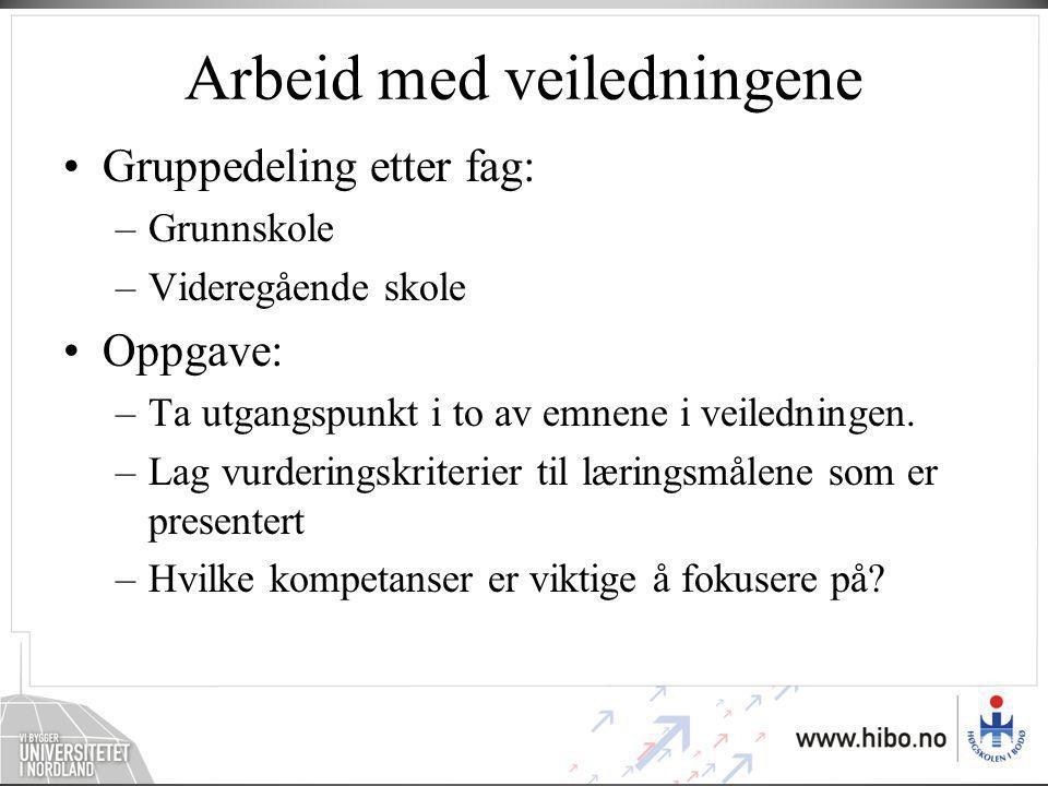 Arbeid med veiledningene •Gruppedeling etter fag: –Grunnskole –Videregående skole •Oppgave: –Ta utgangspunkt i to av emnene i veiledningen.