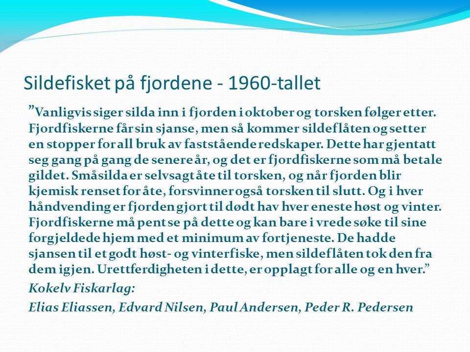 """Sildefisket på fjordene - 1960-tallet """" Vanligvis siger silda inn i fjorden i oktober og torsken følger etter. Fjordfiskerne får sin sjanse, men så ko"""