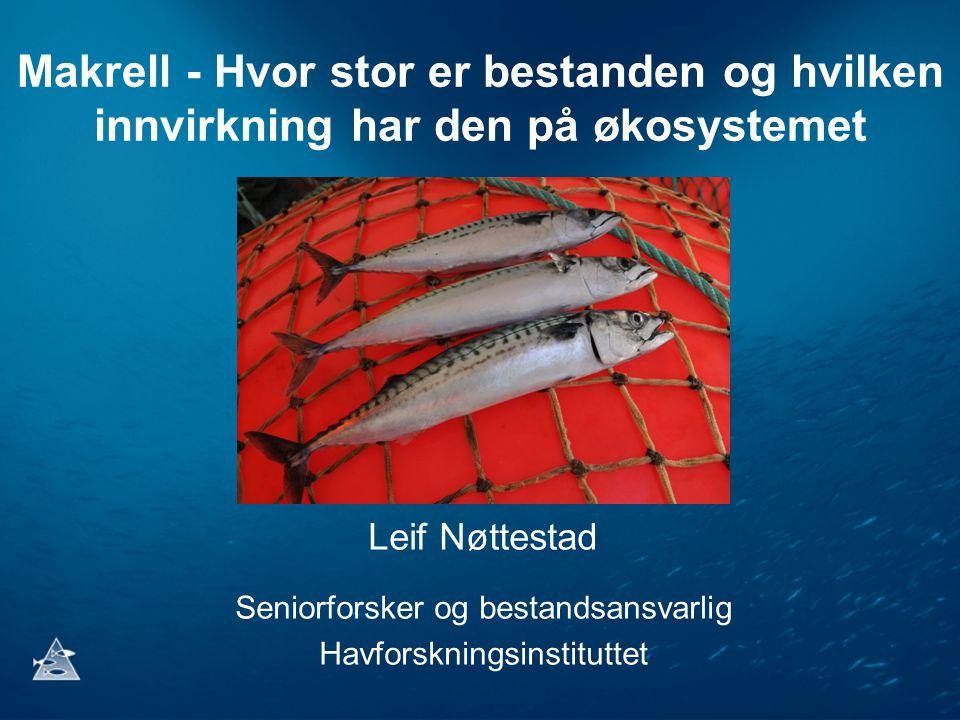Makrell - Hvor stor er bestanden og hvilken innvirkning har den på økosystemet Leif Nøttestad Seniorforsker og bestandsansvarlig Havforskningsinstitut