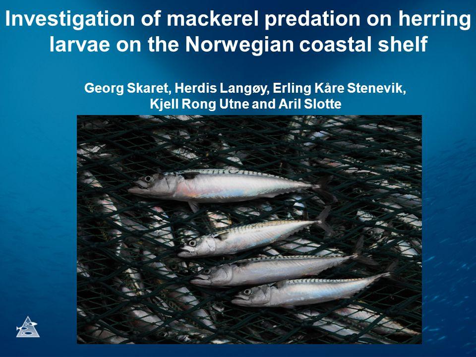 Investigation of mackerel predation on herring larvae on the Norwegian coastal shelf Georg Skaret, Herdis Langøy, Erling Kåre Stenevik, Kjell Rong Utn