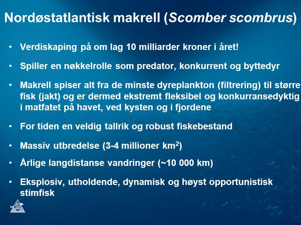 Nordøstatlantisk makrell (Scomber scombrus) •Verdiskaping på om lag 10 milliarder kroner i året! •Spiller en nøkkelrolle som predator, konkurrent og b