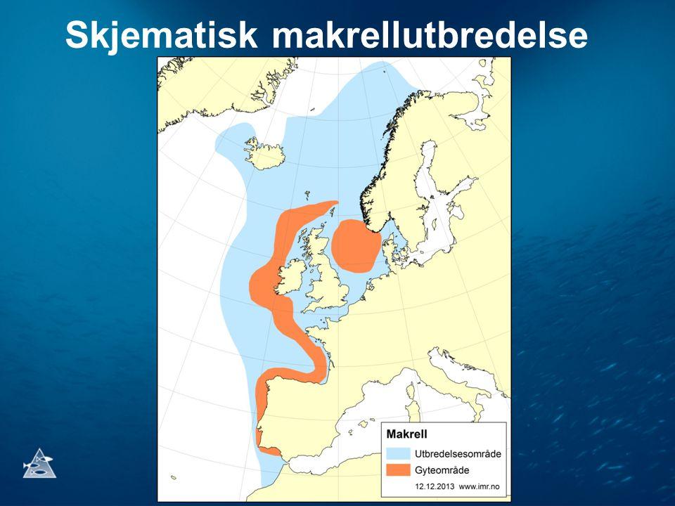 Tett samarbeid mellom fiskeflåten og Havforskningsinstituttet har ført til bedre makrell- og økosystemkartlegging Utfordringer framover for toktgjennomføring: • Moms på leie av tjenester fra fiskefartøy til forskningsformål • Betaling av anvendt makrell- og sildekvote til toktkartlegging • Økt utbredelse medfører større behov for flere toktdøgn • Økte kostnader til toktgodtgjørelse ved Havforskningen • Den nye fiskeriavgiftsordning skaper utilsiktet uforutsigbarhet