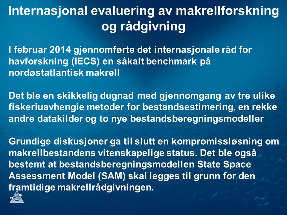 Internasjonal evaluering av makrellforskning og rådgivning I februar 2014 gjennomførte det internasjonale råd for havforskning (IECS) en såkalt benchmark på nordøstatlantisk makrell Det ble en skikkelig dugnad med gjennomgang av tre ulike fiskeriuavhengie metoder for bestandsestimering, en rekke andre datakilder og to nye bestandsberegningsmodeller Grundige diskusjoner ga til slutt en kompromissløsning om makrellbestandens vitenskapelige status.