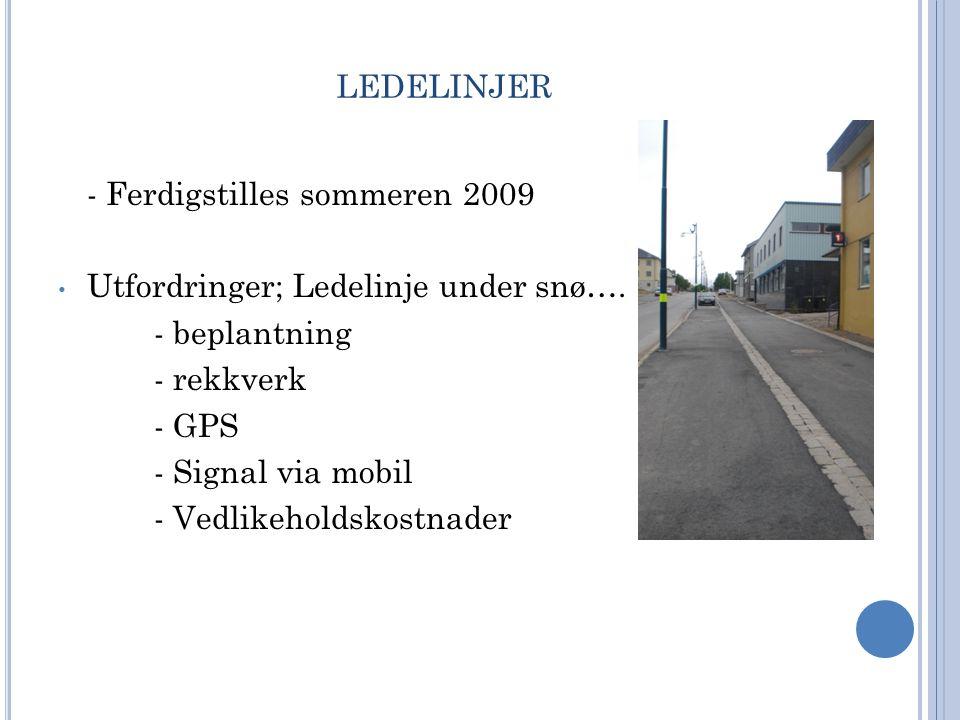 LEDELINJER - Ferdigstilles sommeren 2009 • Utfordringer; Ledelinje under snø…. - beplantning - rekkverk - GPS - Signal via mobil - Vedlikeholdskostnad