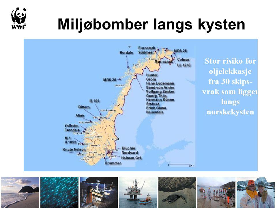 Miljøbomber langs kysten Stor risiko for oljelekkasje fra 30 skips- vrak som ligger langs norskekysten