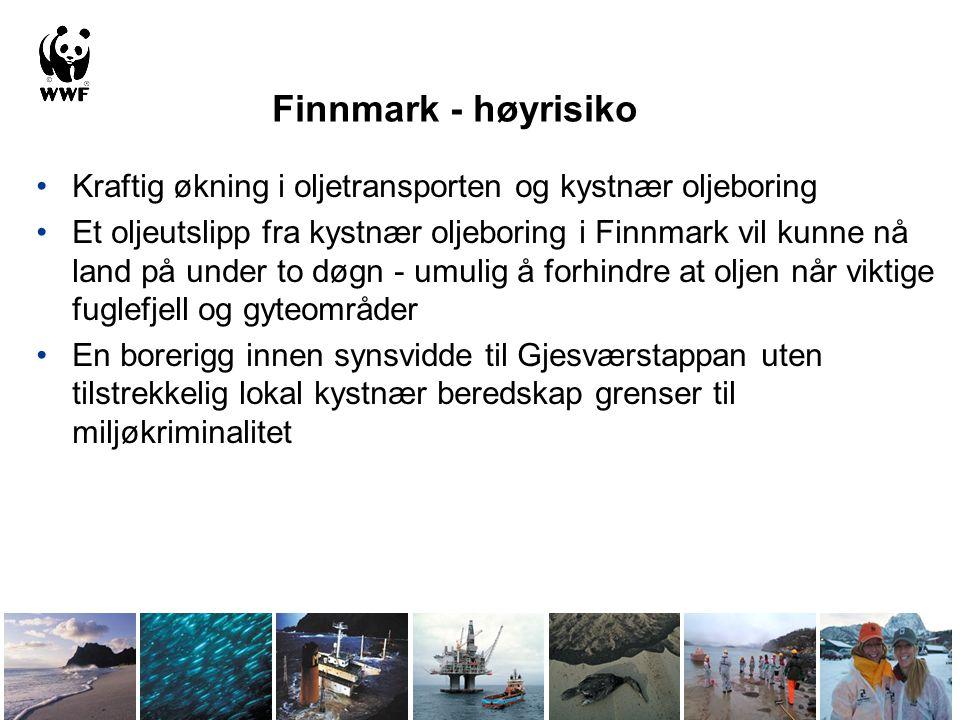 Finnmark - høyrisiko •Kraftig økning i oljetransporten og kystnær oljeboring •Et oljeutslipp fra kystnær oljeboring i Finnmark vil kunne nå land på un