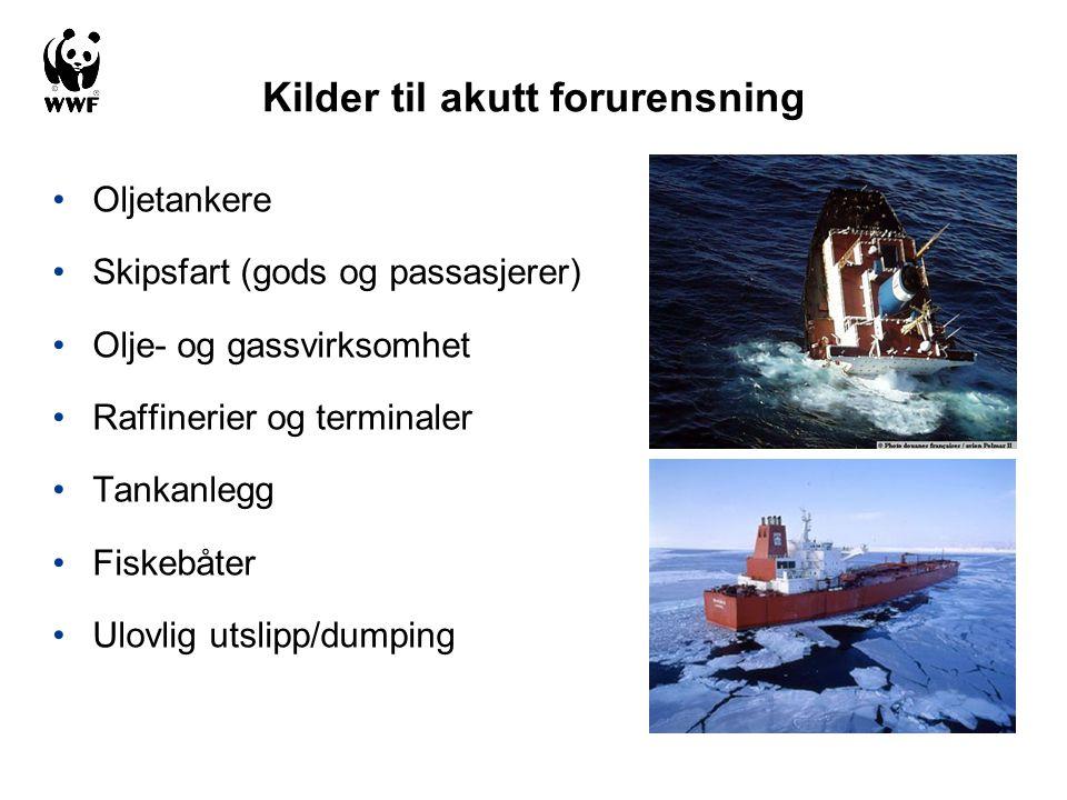 Kilder til akutt forurensning •Oljetankere •Skipsfart (gods og passasjerer) •Olje- og gassvirksomhet •Raffinerier og terminaler •Tankanlegg •Fiskebåte
