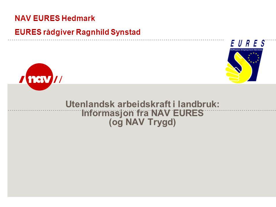 Utenlandsk arbeidskraft i landbruk: Informasjon fra NAV EURES (og NAV Trygd) NAV EURES Hedmark EURES rådgiver Ragnhild Synstad