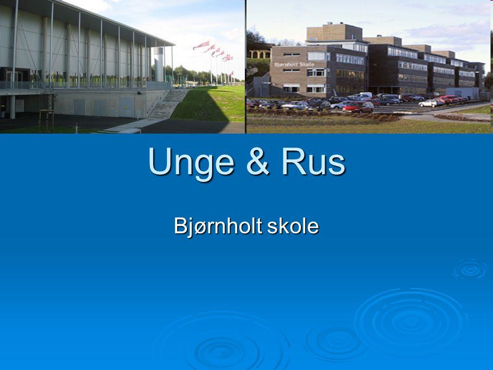 Bjørnholt skole er …  en 8-13 skole som består av 2 bygg ved siden av hverandre  Norges største 8-13 skole med ca.