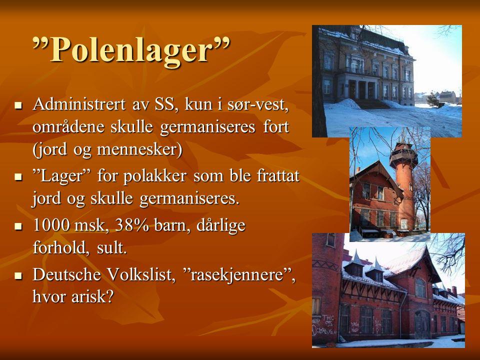 Polenlager  Administrert av SS, kun i sør-vest, områdene skulle germaniseres fort (jord og mennesker)  Lager for polakker som ble frattat jord og skulle germaniseres.