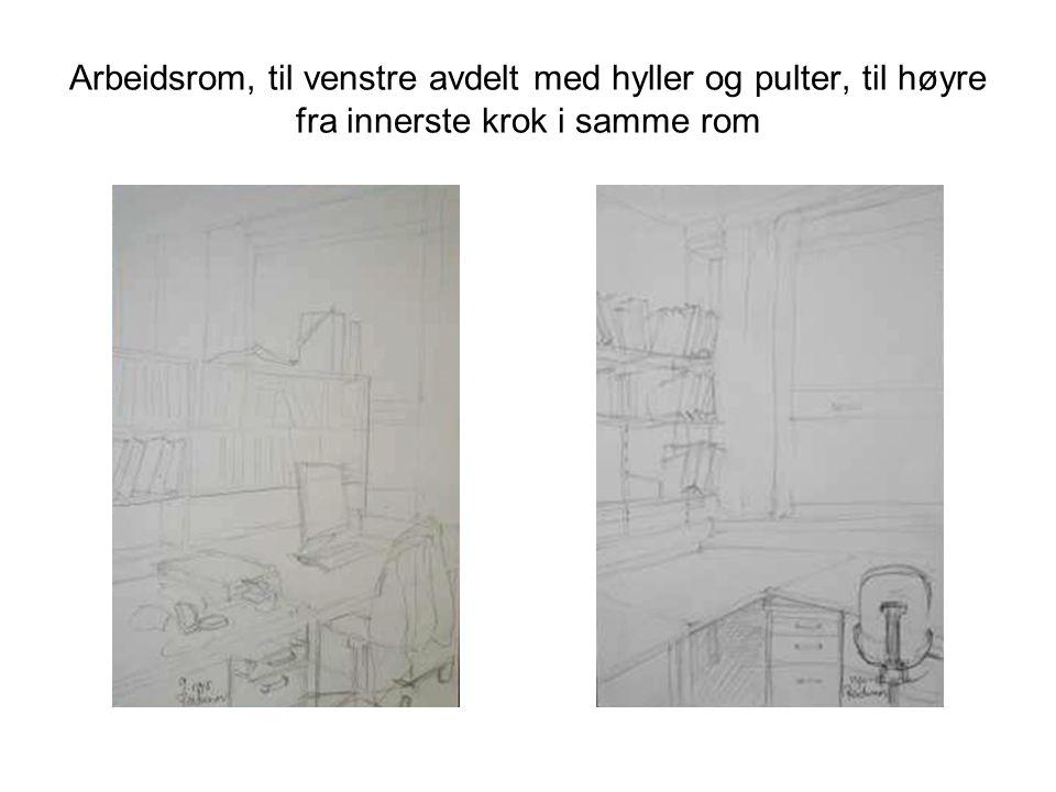 Arbeidsrom, til venstre avdelt med hyller og pulter, til høyre fra innerste krok i samme rom